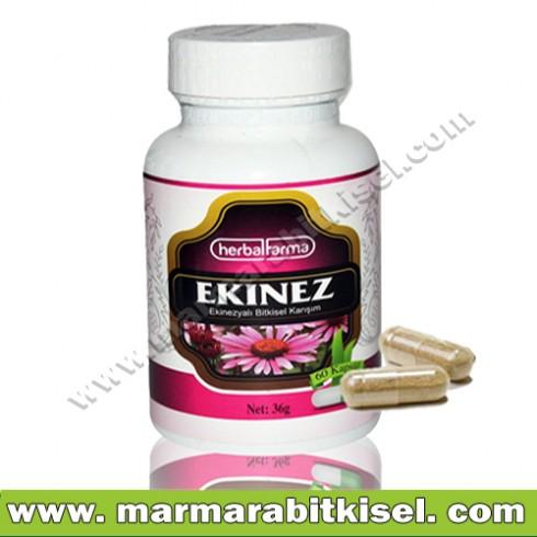 Herbal Farma Ekinez kapsul / Bgsklk