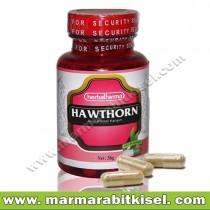 Herbal Farma Hawthorn / Klp-rtm-bzklg