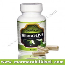 Herbal Farma Herbolive / Şkr-hstlg