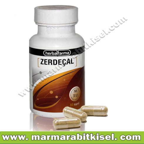 Herbal Farma Zerdeçal 60 kapsül