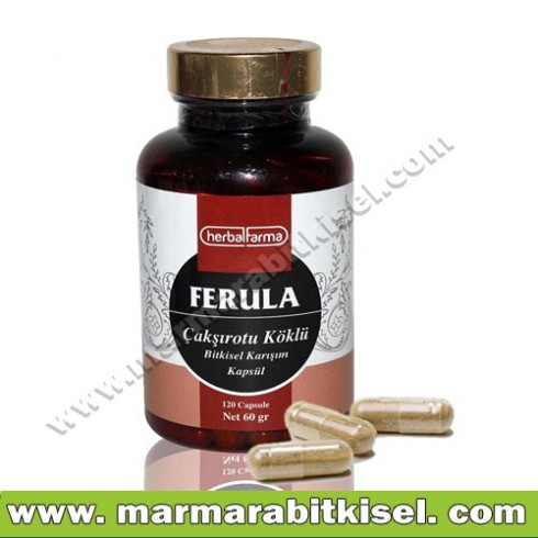 Herbal Farma Ferula Kapsül / Sprm-artc